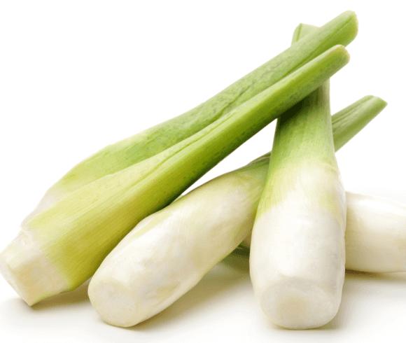 有機資材之應用對茭白筍生長與產量之影響