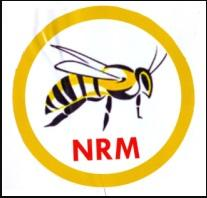 Oasdom.com newly registered political parties in nigeria 2018 National Rescue Movement NRM - List of All the Political Parties In Nigeria and Their Slogans and Logos 2018 to 2019