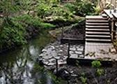 神秘の泉「男池」