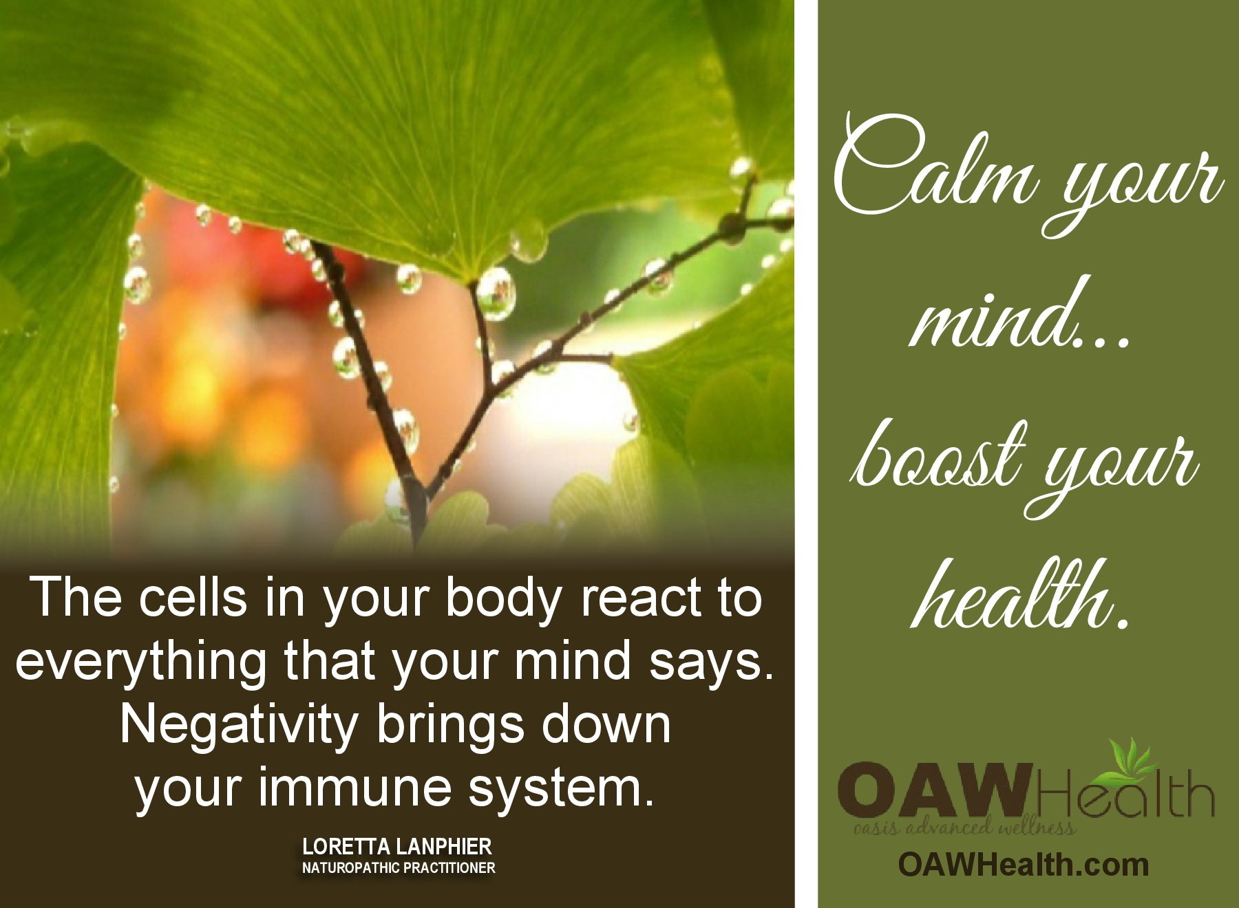 Calm Your Mind – Boost Your Health