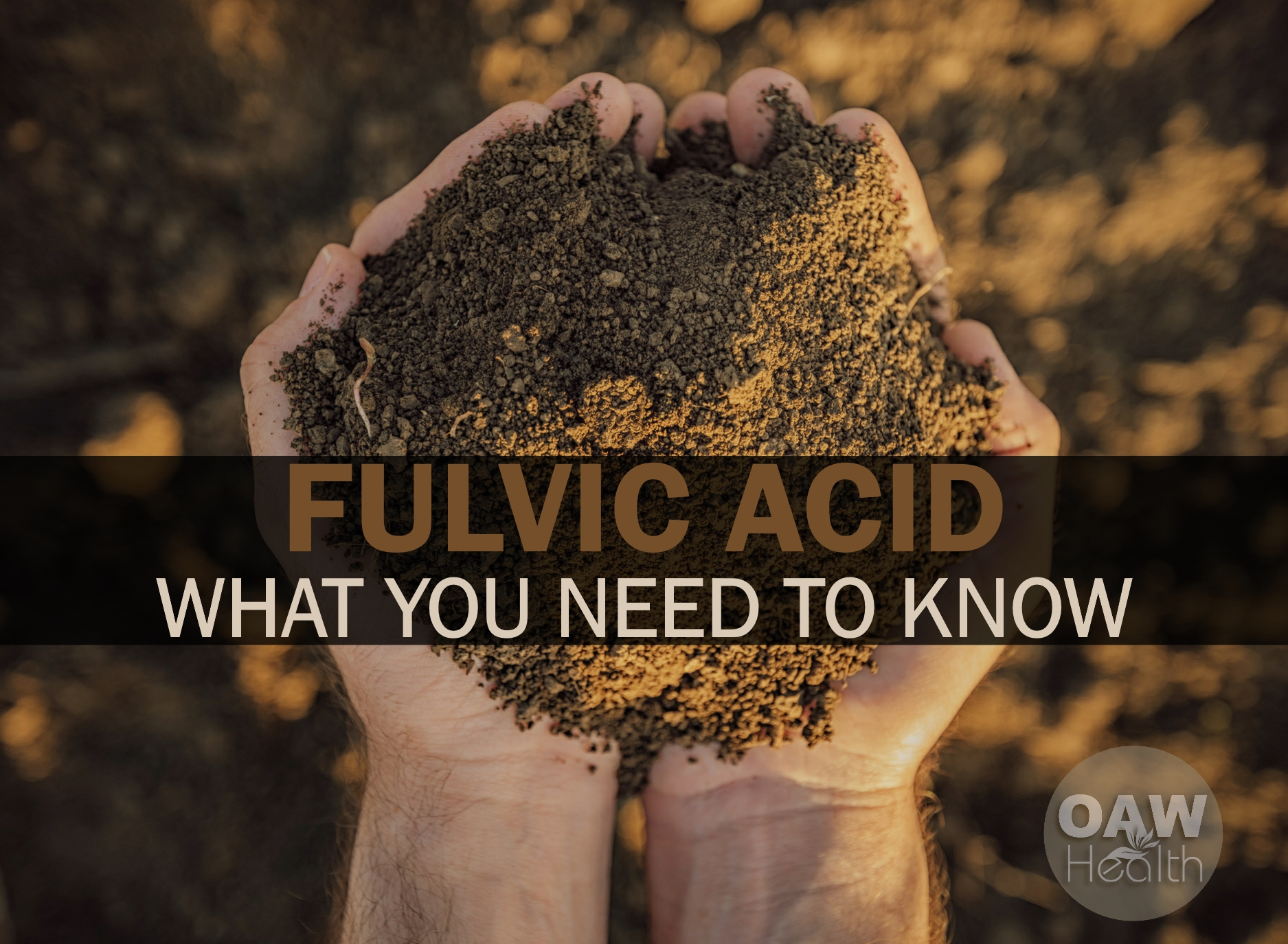 Fulvic Acid – What You Need to Know