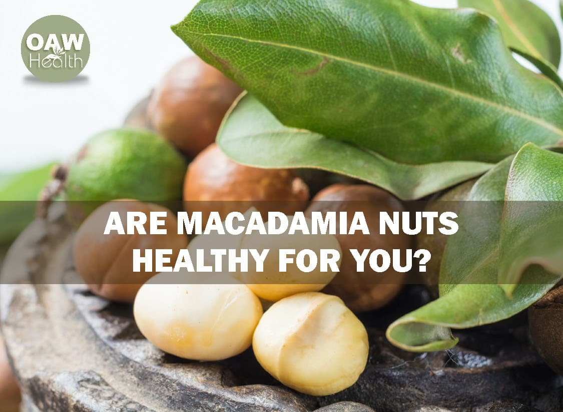 Are Macadamia Nuts Healthy for You?