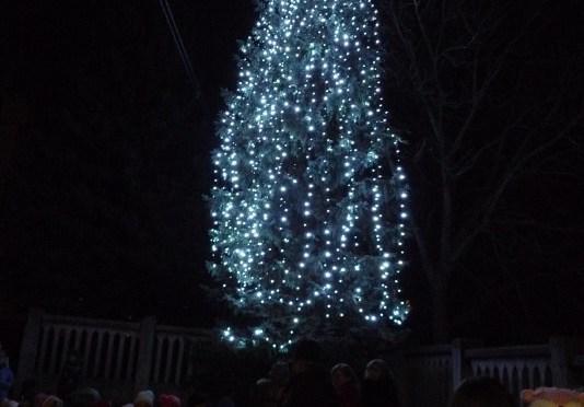 Slávnostné rozsvecovanie vianočného stromčeka v našej obci Víťaz