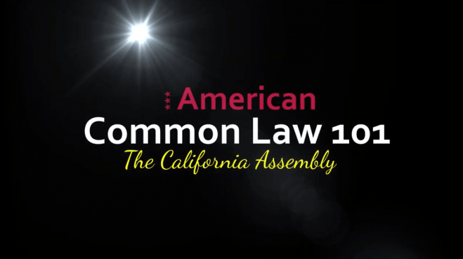 Common Law 101 — Michelle Ford