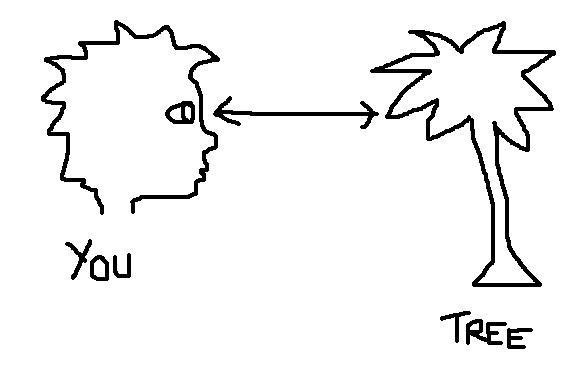 TheoriesofPerception