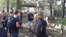 Heimattiergarten_2018_OSB02