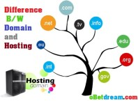 Differrece between domain & web hosting