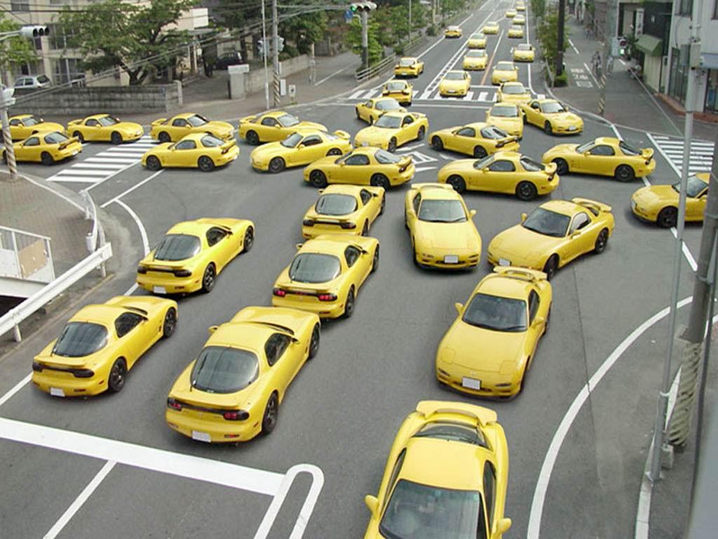 Programări online la  Serviciul Public Comunitar Regim Permise de Conducere şi Înmatriculare a Vehiculelor Ialomița