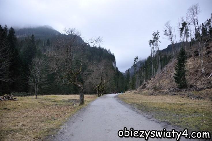 Obrazek posiada pusty atrybut alt; plik o nazwie koc59bcieliska-1.jpg