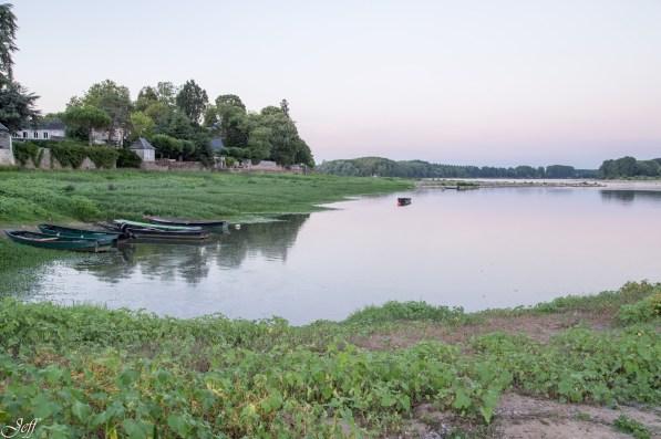 Visite à la Pointe Bouchemaine au coucher de soleil entre la Loire et la Maine (4)
