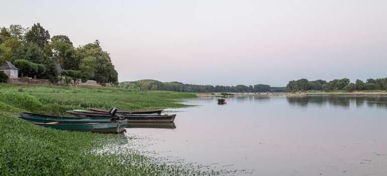 Visite à la Pointe Bouchemaine au coucher de soleil entre la Loire et la Maine