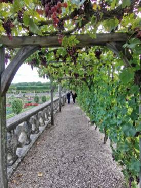 chateau et jardins de villandry_New Name_209e8184-8c11-4239-b955-b9dba048bf6e