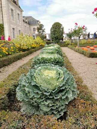 chateau et jardins de villandry_New Name_IMG_20190928_140621