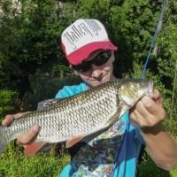 La pêche du chevesne aux leurres
