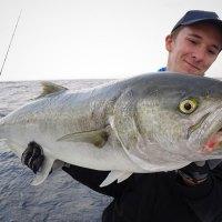 Tout savoir sur la pêche du tassergal