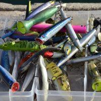 Comment trouver le meilleur leurre pour la pêche ?