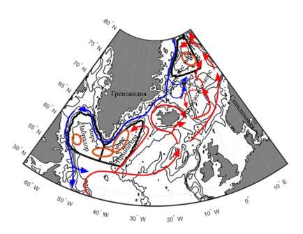 Потоки теплых вод на север и холодных поверхностных вод на юг. Охровыми эллипсами показаны районы, где наиболее часто формируются глубинные воды глобального океанического конвейера. © СПбГУ