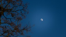 Mond geht auch