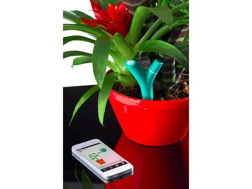 Découvrez le Flower Power, objet connecté pour le Jardin de la marque Parrot