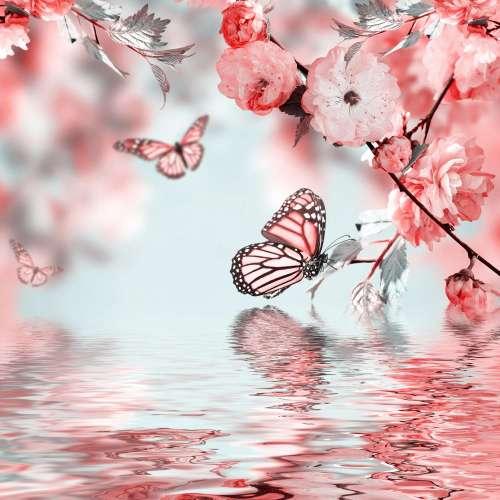 Полет бабочки,фотопанно, фотобои, фотопанно ВАШ ВЕК