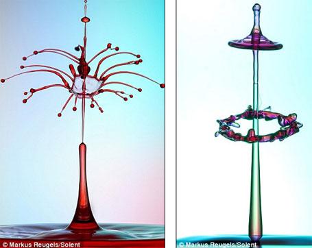 Foto 3 - obra de arte feita com água