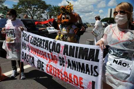 Foto 2 - Protesto de manifestantes contra experimentação animal