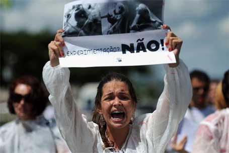 Foto 1 - Protesto de manifestante contra experimentação animal