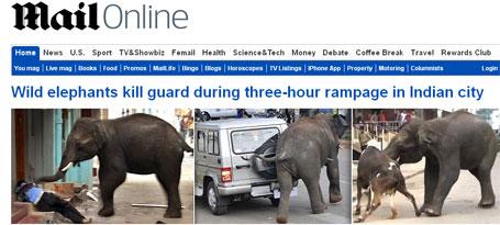 Elefantes matando pessoas e animais
