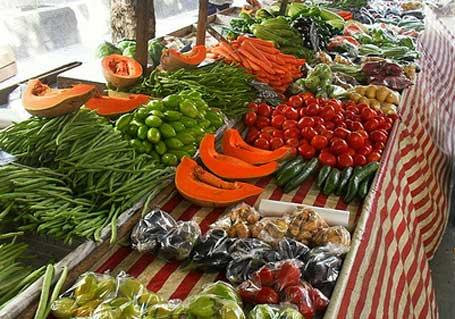 Imagem frutas e hortaliças