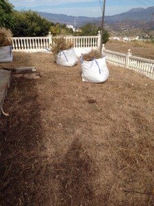 Trabajos de desbroce y preparación de terreno para jardín