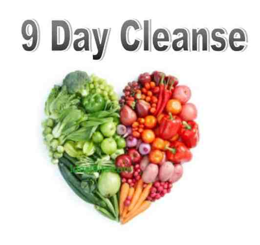 Protected: 9 Day Cleanse
