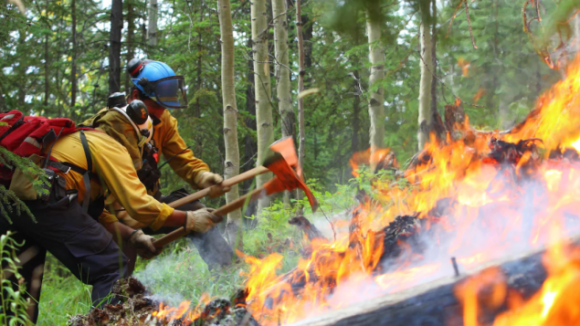 http://www.rcinet.ca/zh/wp-content/uploads/sites/6/2019/05/wile-fire-635x357.png