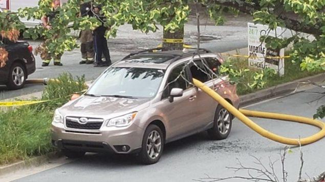 忽视消火栓前不能停车的规定,这位司机真的悲催了