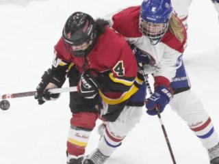 加拿大女子冰球联盟停运 女子冰球将往哪里去?
