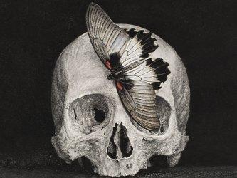Jozef Van Wissem - Nobody Living Can Ever Make Me Turn Back