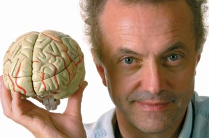 It's the brain, stupid!