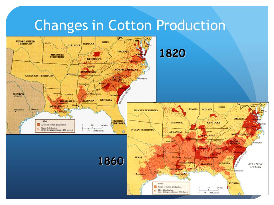 Changes+in+Cotton+Production