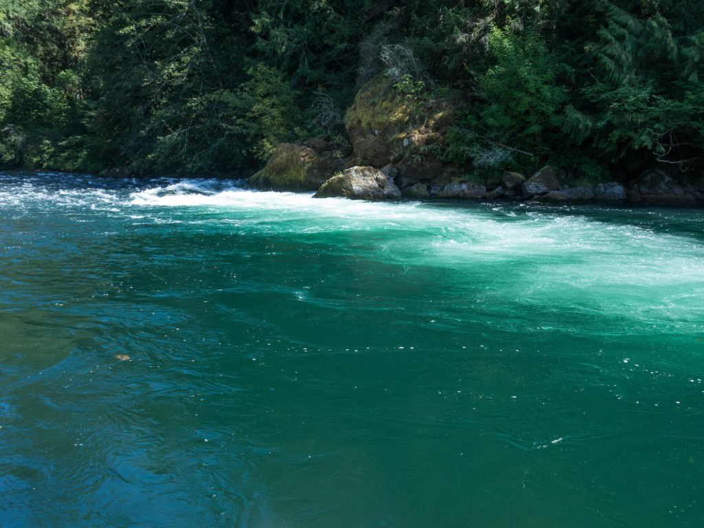 McKenzie River Oregon