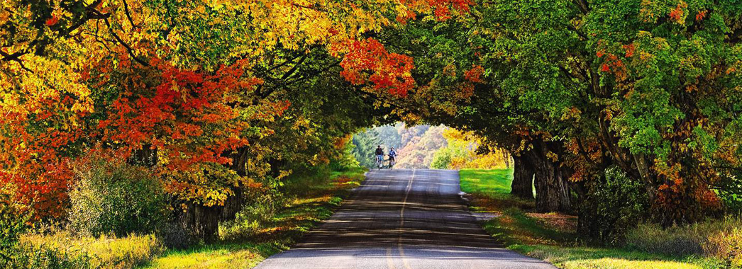 Pure Michigan Fall Wallpaper Best Places To See Fall Colors Occ Outdoors Blog
