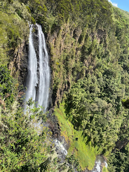 Chasing Waterfalls in Aberdare National Park