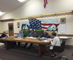 Grant Township board members (left to right) James Aebig, Joanne Heck, Roger Schmidt, William Wagner and Joan Brooks during Tuesday night's meeting.
