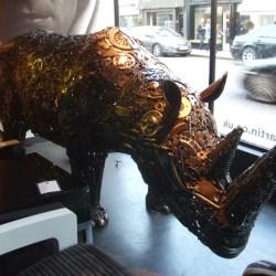 Rhino for USA