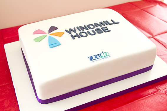 Windmill House Cake sml