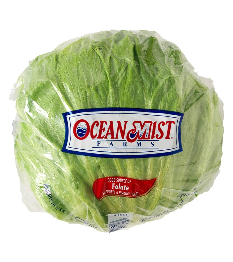 Do You Have To Wash Iceberg Lettuce