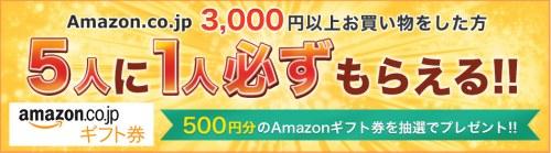 Amazon500円ギフト券キャンペーン
