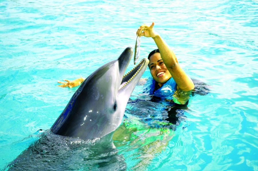Dolphin Swim en Ocean World