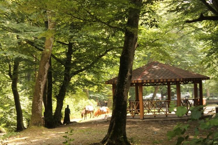 ozel-cocuklar-piknik-9-haziran-2014--45