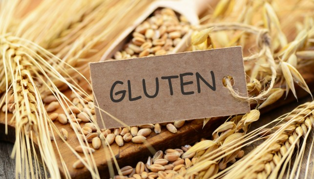 Image result for Gluten