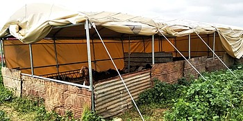 Livelihood tents provided under the inter-agency response mechanism. © Photo by WBPC
