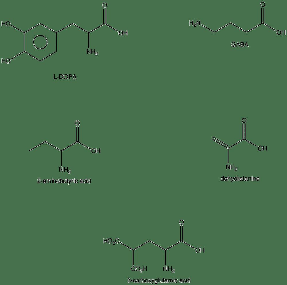 medium resolution of nonstandard amino acid